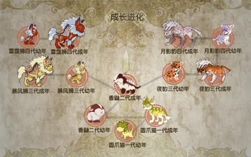 猫系进化图