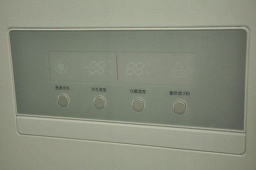 大唐绣球花纹 lg gr-a2075fha冰箱简评