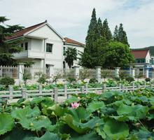 建设新农村