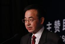 国家信息中心经济预测部首席经济师 王远鸿